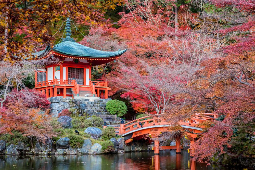 Японское фото 26567 фотография